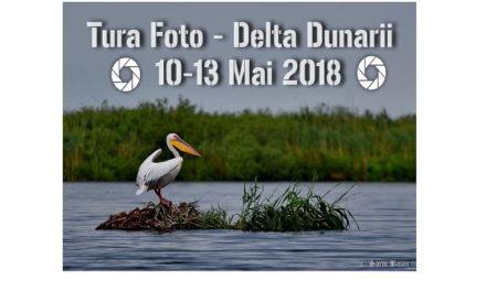 Tura Foto in Delta Dunarii